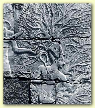 Osiris and the Tree of Life