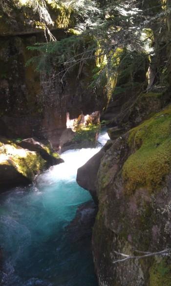 trail-of-cedars-close